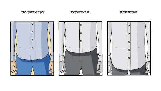 Рубашка с коротким или длинными рукавом?