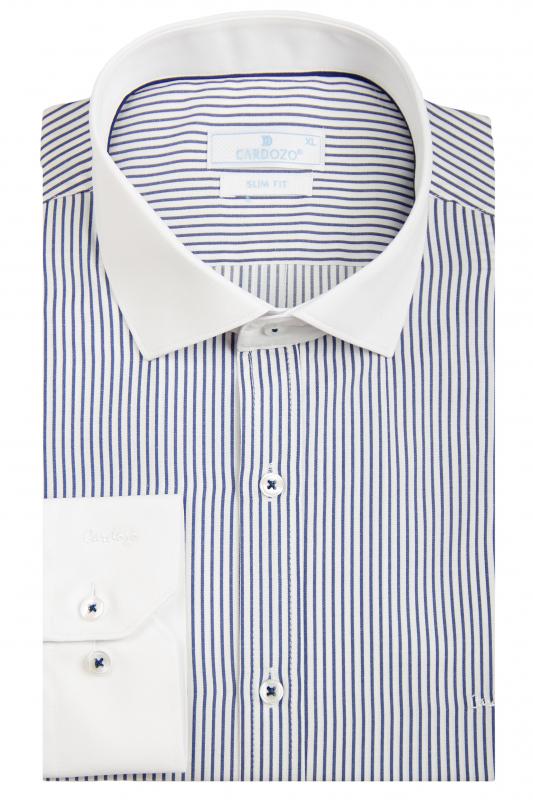 b79cc0d8ac1 Рубашка белая в синюю полоску ворот белый CARDOZO Приталенные купить ...